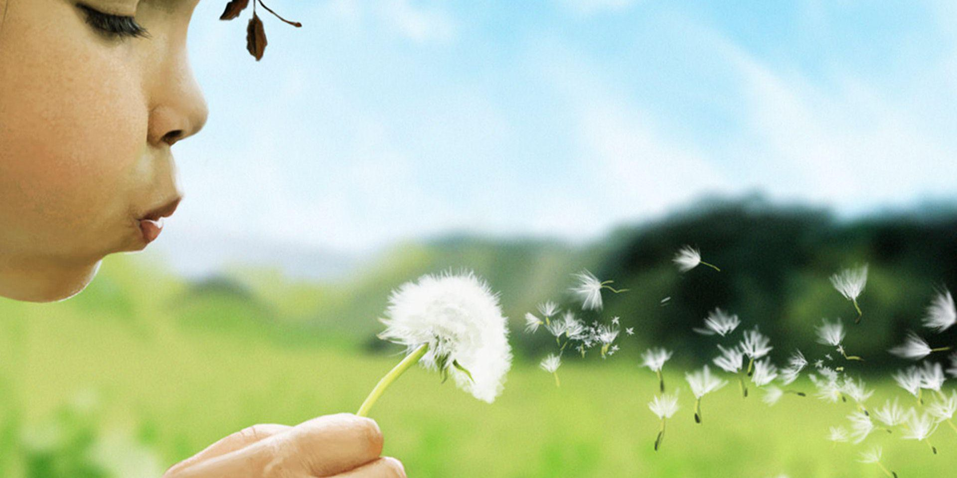 child-girl-blowing-dandelion-taraxacum-flower